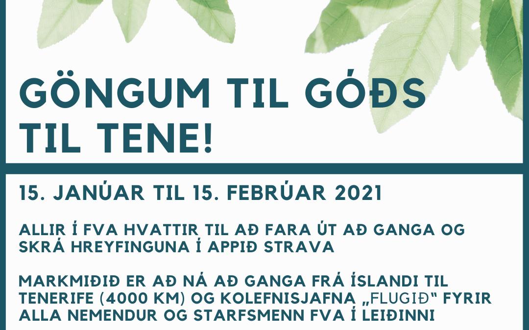 Göngum til góðs – TIL TENE